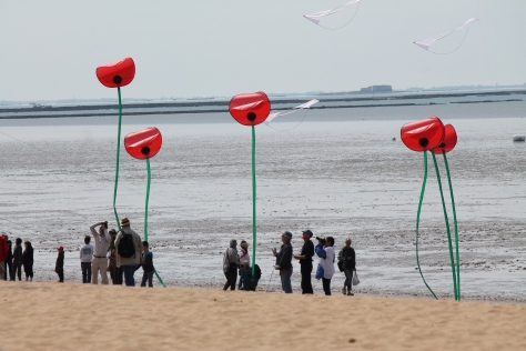Festival de cerf-volant et du vent de Châtelaillon-Plage