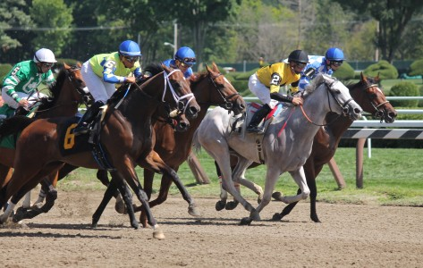 Saratoga Springs, New York, 17 August 2014