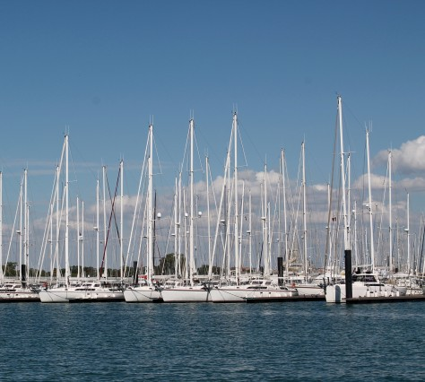 Sailboats in Port Cropped