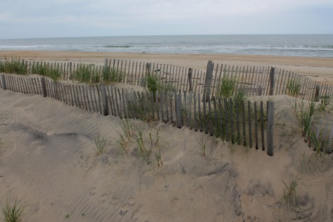 The NOT crowded beach at Rodanthe in November