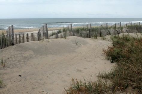 Beach at Rodanthe