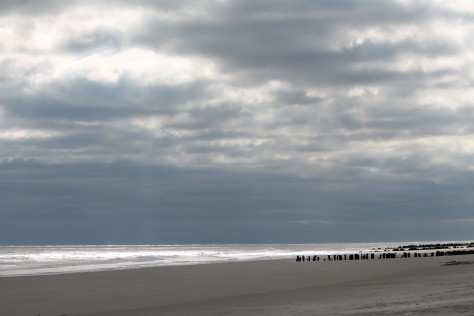 Folly Beach in Evening Light