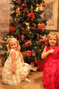 Christmas Eve 2013 -- Felicity, left, and Bailey