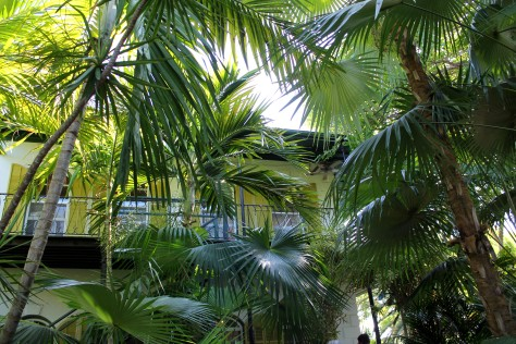 Hemingway House on Key West