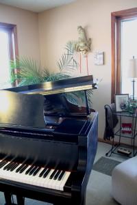 Glossi Music Room