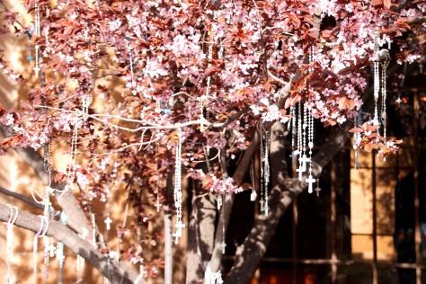 Rosaries on Loretto Chapel Tree