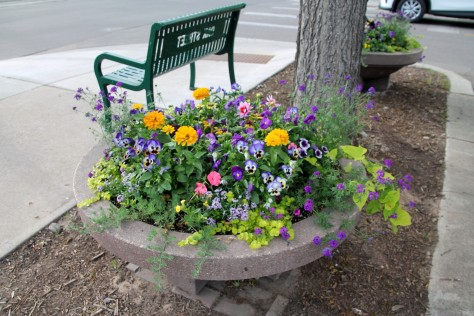 Fort Collins Flowers