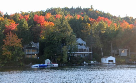 Fall Foliage 4