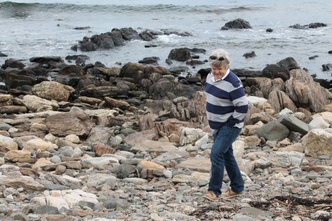 David at Odiorne Point State Park, Portsmouth, New Hampshire